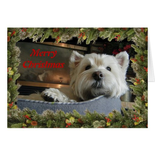 Christmas Westie With Garland Photo Greeting Card Zazzle