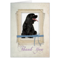 Cocker Spaniel Thank You Card