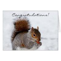 Congratulations Squirrel Greeting card
