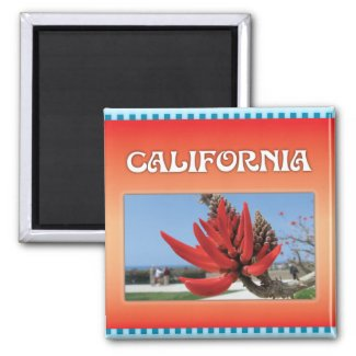Coral Tree in California Magnets