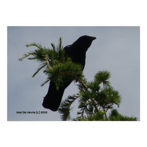 Crow Watch Tower Poster