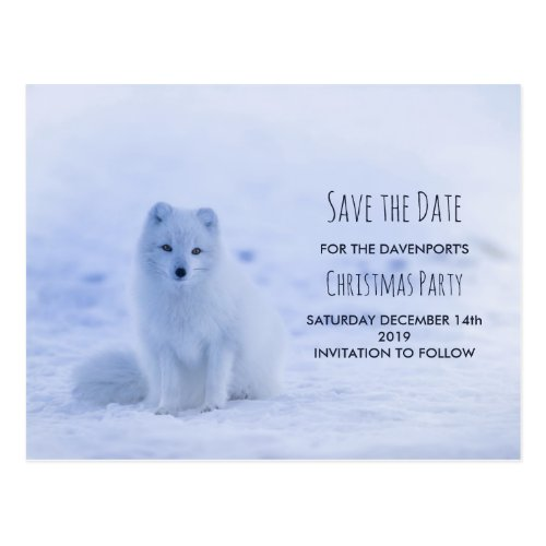 Cute Arctic Fox on Snow Save the Date Postcard