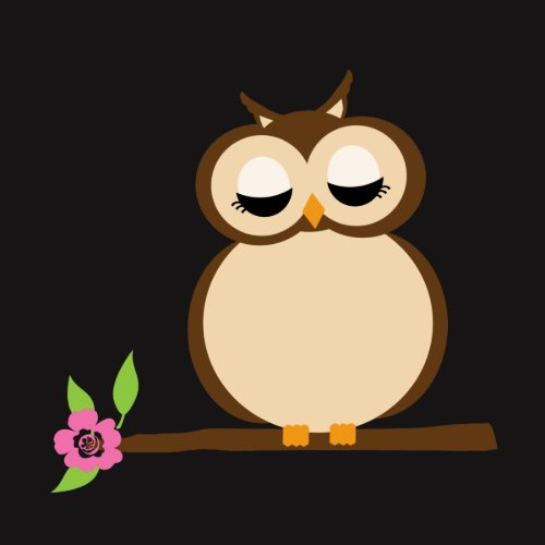 Cute Cartoon owl shirt