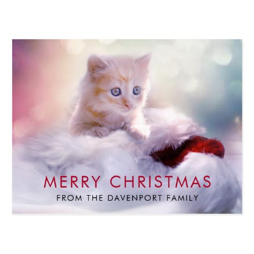 Cute Christmas Kitten Holiday Postcard