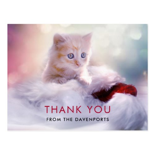 Cute Christmas Kitten Thank You Postcard