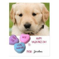 Cute Dog Photo Classroom Valentine Candy Hearts Postcard