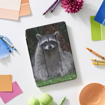 Cute Forest Raccoon Photo iPad Pro Cover