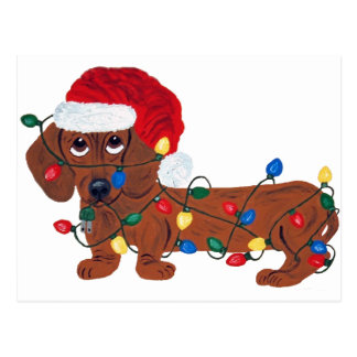 Dachshund Christmas Cards Greeting Amp Photo Cards Zazzle