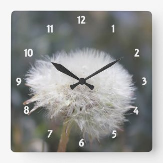 Dandelion Puff Square Wall Clocks