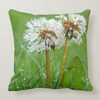 Dandelions by Alexandra Cook Throw Pillows