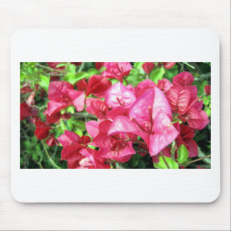 Dark Rhododendron in California Mouse Pads