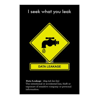 Data leakage definition