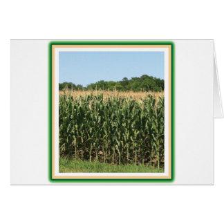 Delaware Corn Card
