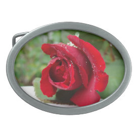 Dew on a Red Rose - Belt Buckle