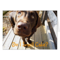 Do I Smell Cake? Chocolate Lab Greeting Card