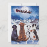 Dog, Christmas, Dogs, Rescue Dogs, Holiday, santa, Holiday Card
