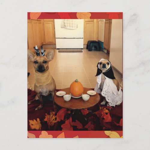 Dog Thanksgiving Holiday Postcard