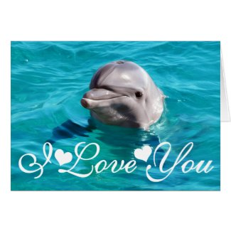 Dolphin in Blue Water Photo I Love You Greeting Cards