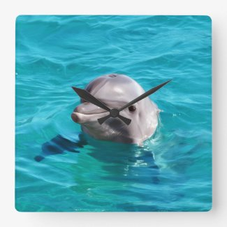Dolphin in Blue Water Photo Wall Clocks