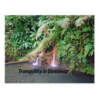 Dominica Island Post Cards