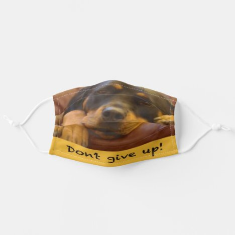 Don't give up! Rottweiler Photo