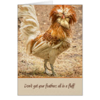 Don't Get Your Feathers All In A Fluff Card