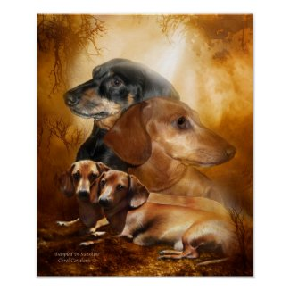 Doxies - Dappled In Sunshine Art Poster/Print
