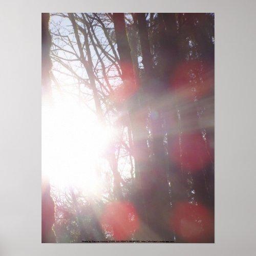 Early Morning Sun Rays #28 print