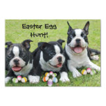 Boston Terrier Puppies Easter Egg Hunt Invitation