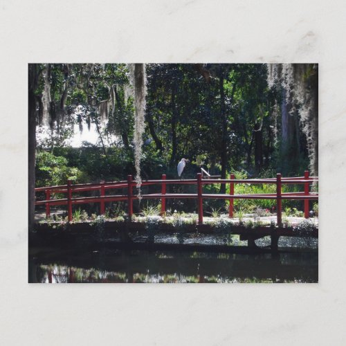 An egret perches on a red bridge in a cypress swamp in a South Carolina botanical garden.  Spanish moss hangs from the trees.