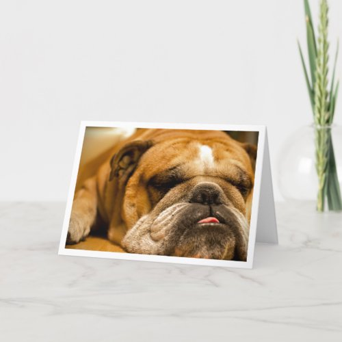 English Bulldog Puppy Dog Thinking of You Card