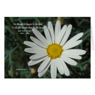 Famous Words: Beauty - White Daisy Card Series (8)