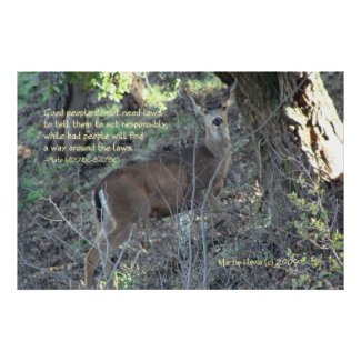 Famous Words: Laws - Deer - Poster
