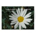 Famous Words: Poetry - White Daisy Card Series (2) zazzle_card