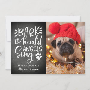 Festive Barks | Holiday Pet Photo Card