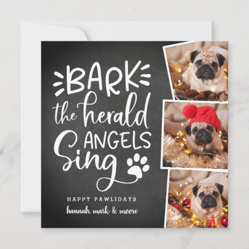 Festive Barks | Square Holiday Pet Photo Card