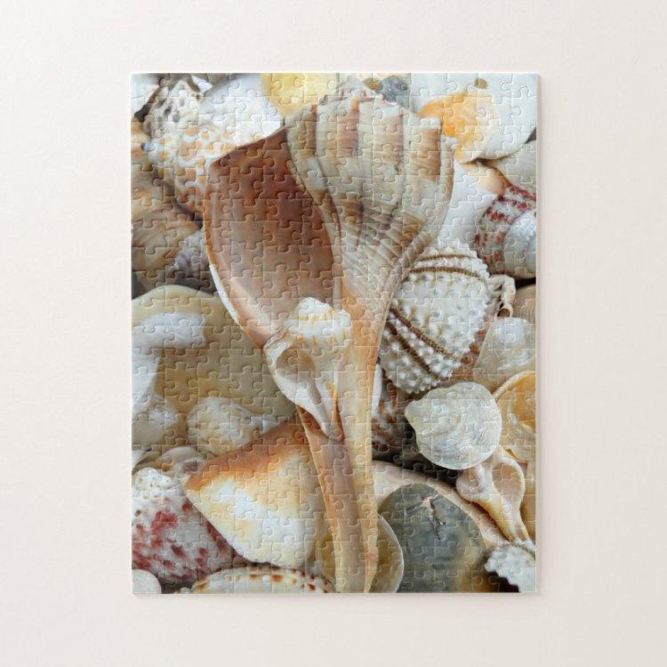 Florida Lightning Whelk Seashells Puzzle