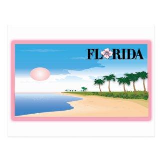 Florida Pink Hibiscus Postcard Beach Scene