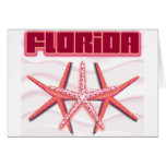 Florida Starfish cards