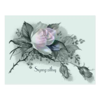 Flowers of Sympathy Postcard