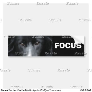 Focus Border Collie Motivational Bumper Sticker