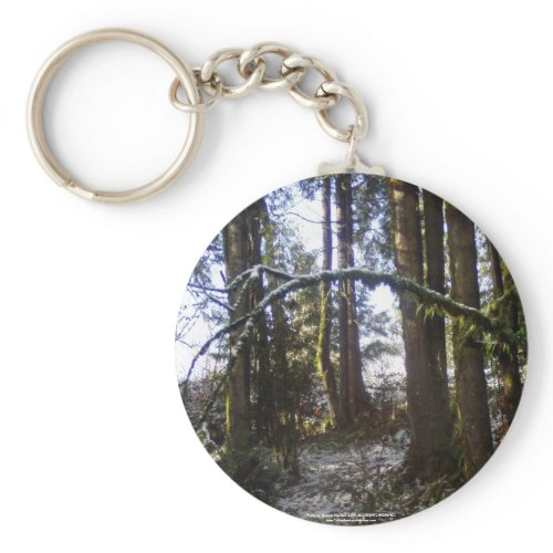 Forest Sun Rays in the Snow #32 keychain