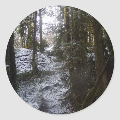 Forest Sun Rays in the Snow #53 sticker