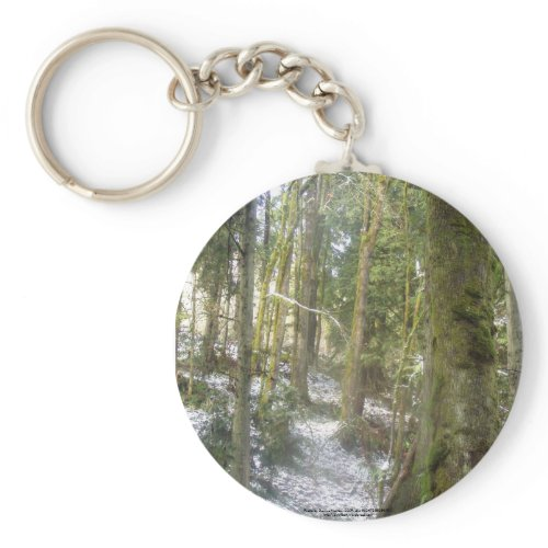 Forest Sun Rays in the Snow #54 keychain