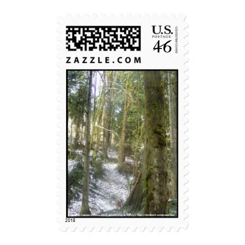 Forest Sun Rays in the Snow #54 stamp