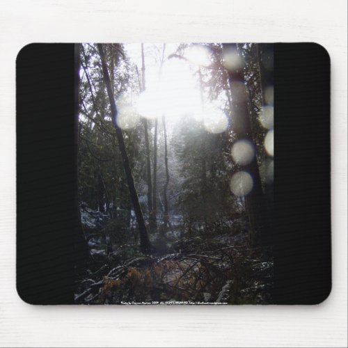 Forest Sun Rays in the Snow #64 mousepad