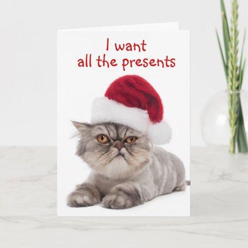 Funny Cranky Cat,