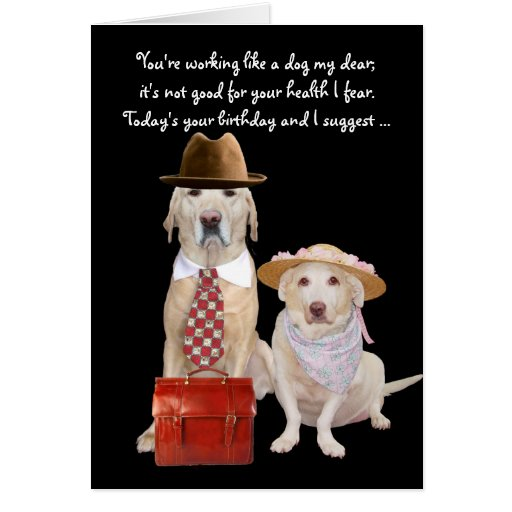 Funny DogLab Birthday For Husband Card Zazzle