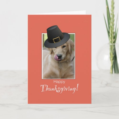 Funny Dog Thanksgiving, Humorous Wearing Pilgrim H Holiday Card