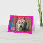 Funny Labradoodle happy birthday greeting card